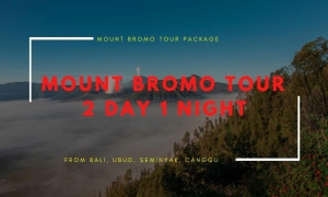 Bromo tour package from Bali 2 Day 1 Night